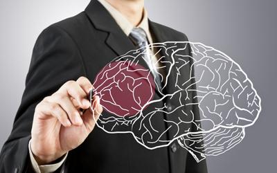Органические и структурные нарушения в ткани мозга - Лето