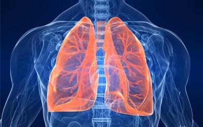 Хронические заболевания органов дыхания - Лето
