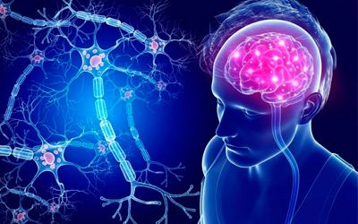 Токсическое поражение центральной нервной системы - Лето