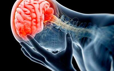 Черепно-мозговые травмы – Лето