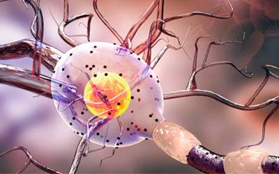 Поражение центральной нервной системы - Лето