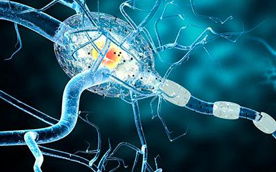 Эпилепсия - Лето