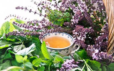 Мягкие растительные препараты - Лето
